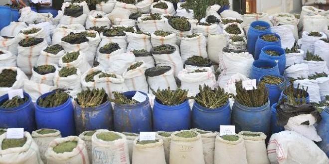Customs seizes 320kg hashish on Egyptian border crossing