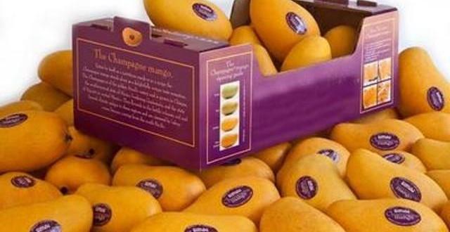 Pakistan earns $68m from mango export