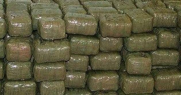 ANF foils smuggling bid, seizes 237kg hashish