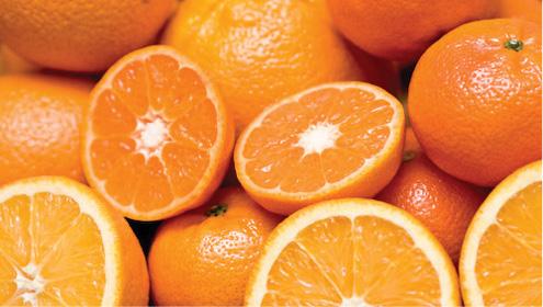 Exporters show no mercy towards Kinnow growers
