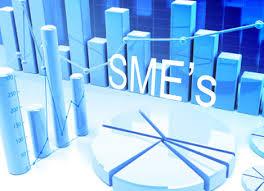 UNIDO organizes workshop to promote SMEs