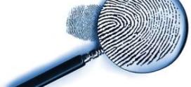 Tax evasion: Customs Court directs CIR to complete investigation against M/s Escord Enterprises