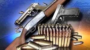 Bulgarian Customs seize two Guns from Turkey
