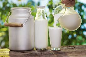 Zimbabwe's annual raw milk output increase 5%