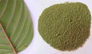 Malaysia police seize ketum powder worth RM280,000