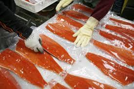 Norwegian salmon exports to China rose last week
