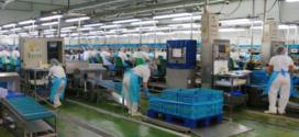 Mercadona, Brazilian business boost Jealsa's 2017 sales