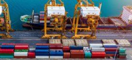 Hamilton port sees strong year so far