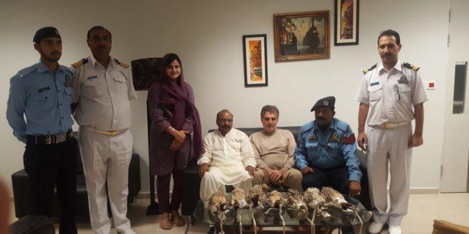 NIIA Customs arrests Iraqi passenger, recovers 7 falcons