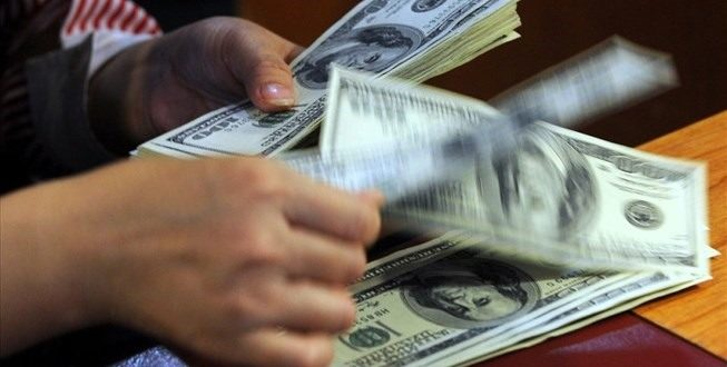 No huge pressure on exchange in 2019: forecast