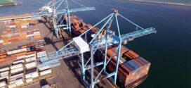 Black Quay draws up South Australia port masterplan