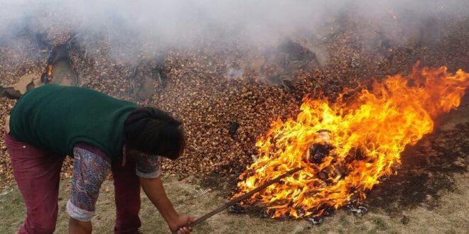 Faisalabad I&I torches contraband items at dryport