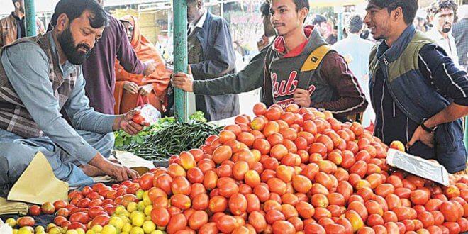 Iranian tomatoes reach Taftan