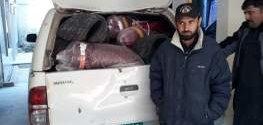 Peshawar customs seizes black tea, betal nuts from Hayatabad