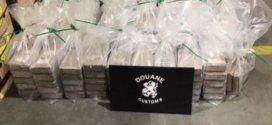 Over 900 Kilos Of Cocaine Found In Banana Shipment