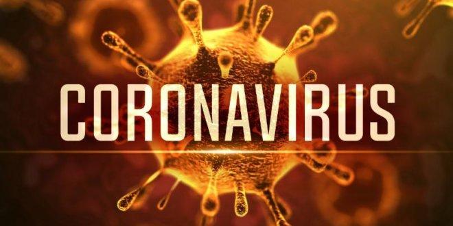 Chinese firm develops kit detecting novel coronavirus in 15 minutes
