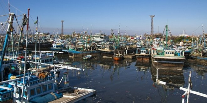 Govt orders halt to fishing related activities at Karachi harbour to stem virus