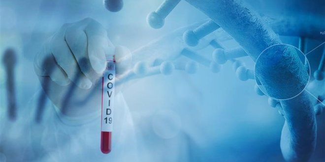 Coronavirus Cure: Blood Plasma of Iran, Iraq Pilgrims Can Be Used As Medicine