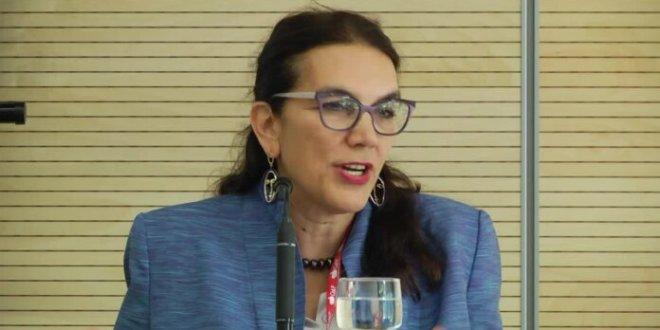 GSP-Plus facility: EU envoy urges Pakistani exporters to focus on product diversity